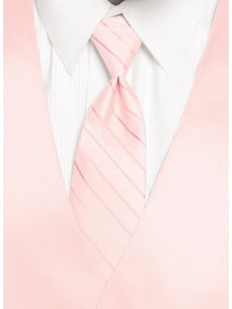 'Larr Brio' Simply Solid Tie - Blush